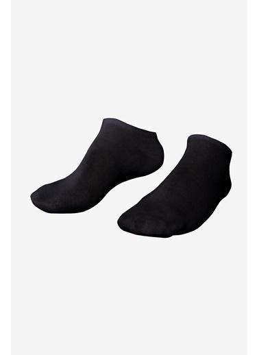 Lescon La-3153 Siyah 2'Li Patik Çorap 40-45 Siyah